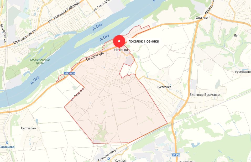 Новинские и богородские депутаты поддержали объединение Нижнего Новгорода с Новинками