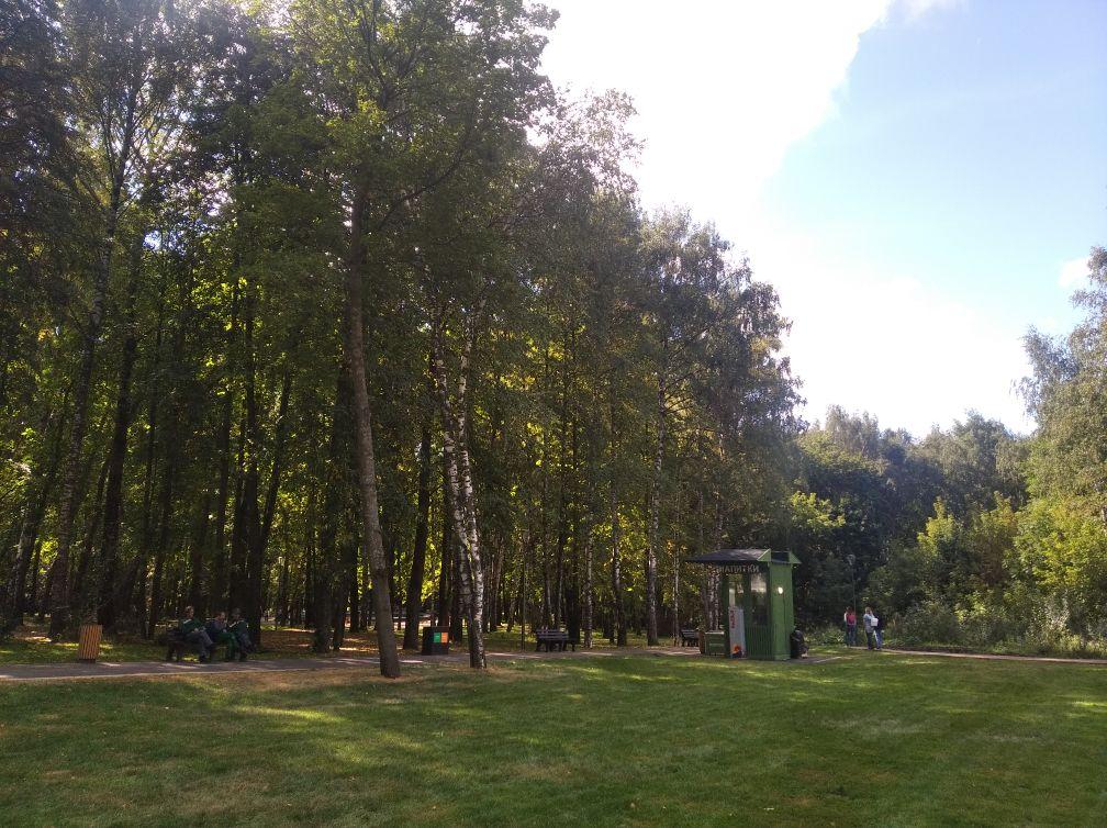 Высадку деревьев начали в нижегородском парке «Швейцария» - фото 1